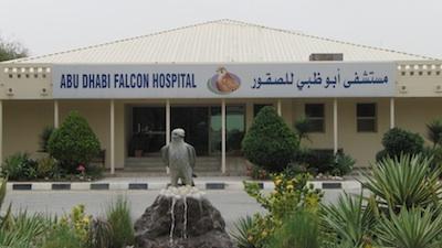 http://www.fragdienachbarn.org/bilder2011/Falken_Krankenhaus_Abu_Dhabi.jpg